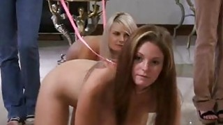 Stare at lesbo babes licking twats of every other